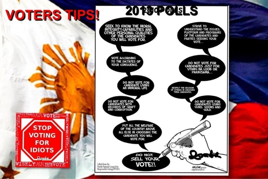 Voters tips for 2013 elections